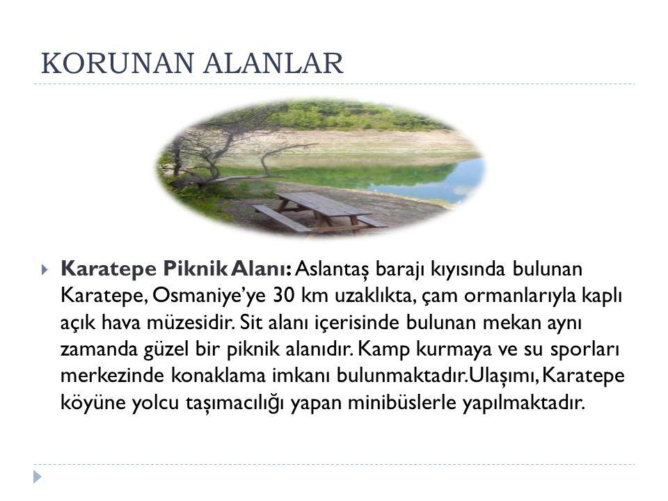 KORUNAN ALANLAR  Karatepe Piknik Alanı: Aslantaş barajı kıyısında bulunan Karatepe, Osmaniye'ye 30 km uzaklıkta, çam ormanlarıyla kaplı açık hava müz