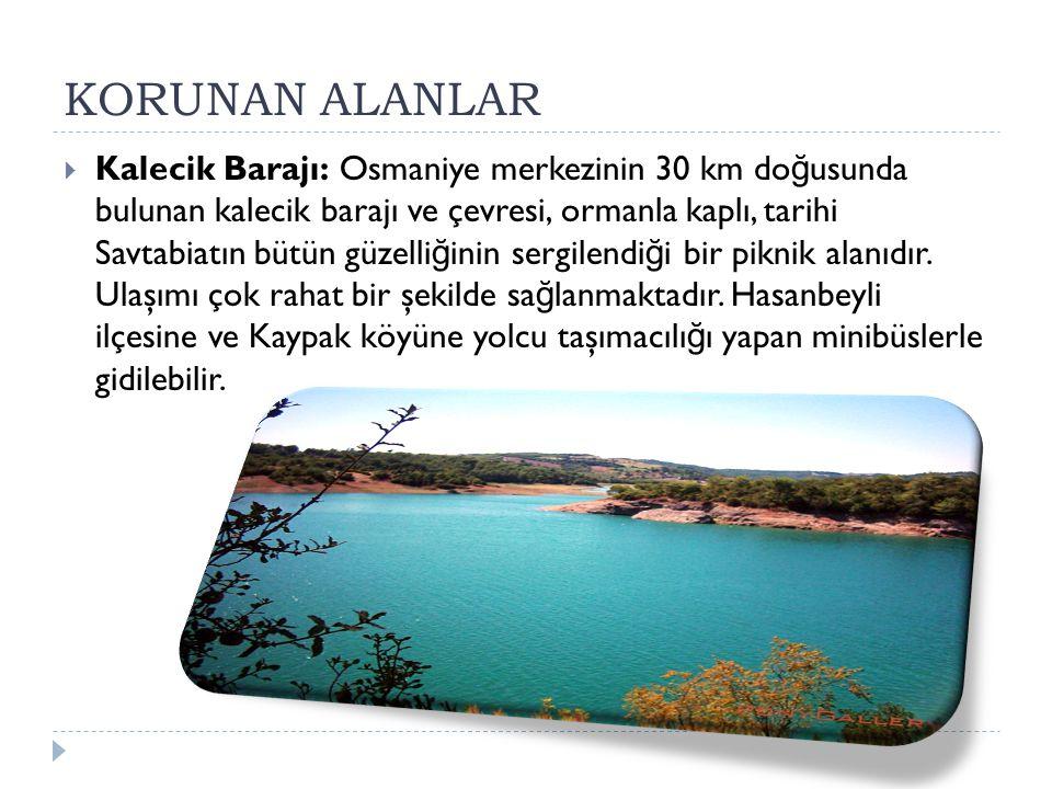 KORUNAN ALANLAR  Kalecik Barajı: Osmaniye merkezinin 30 km do ğ usunda bulunan kalecik barajı ve çevresi, ormanla kaplı, tarihi Savtabiatın bütün güz