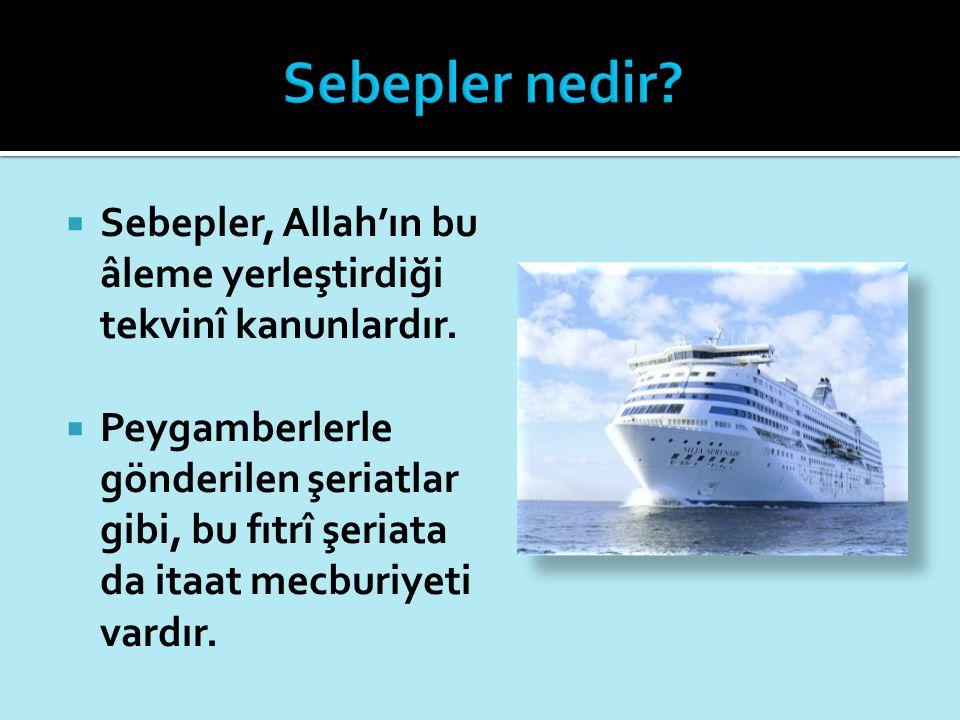  Sebepler, Allah'ın bu âleme yerleştirdiği tekvinî kanunlardır.  Peygamberlerle gönderilen şeriatlar gibi, bu fıtrî şeriata da itaat mecburiyeti var