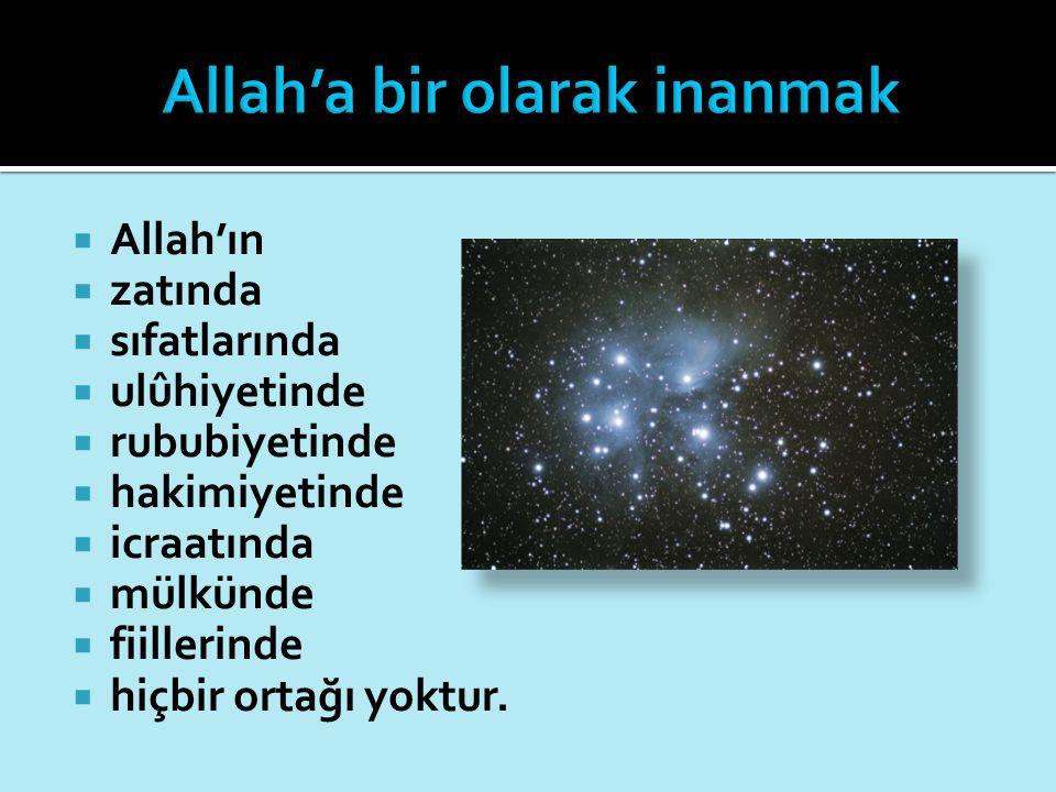  Allah'ın  zatında  sıfatlarında  ulûhiyetinde  rububiyetinde  hakimiyetinde  icraatında  mülkünde  fiillerinde  hiçbir ortağı yoktur.