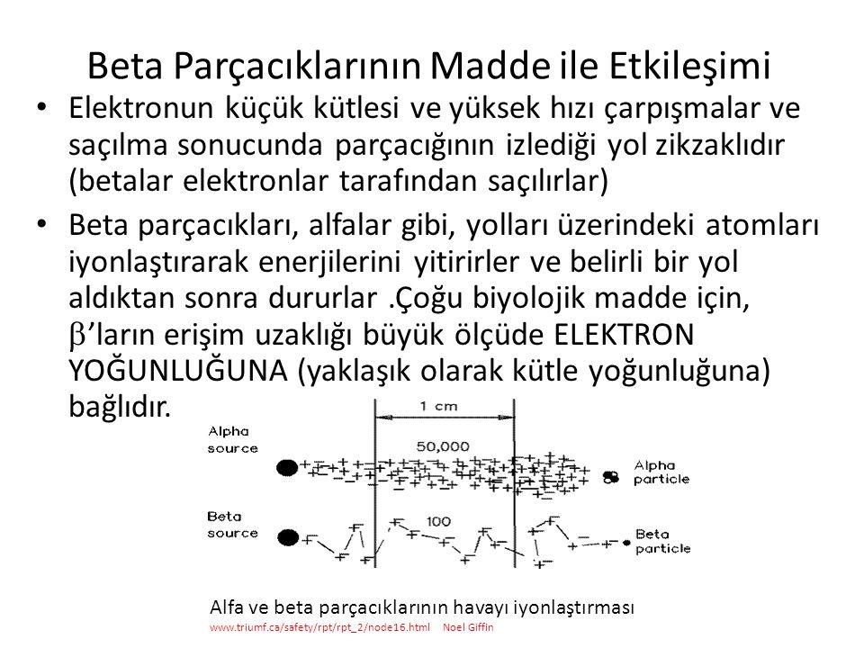 Beta Parçacıklarının Madde ile Etkileşimi • Elektronun küçük kütlesi ve yüksek hızı çarpışmalar ve saçılma sonucunda parçacığının izlediği yol zikzaklıdır (betalar elektronlar tarafından saçılırlar) • Beta parçacıkları, alfalar gibi, yolları üzerindeki atomları iyonlaştırarak enerjilerini yitirirler ve belirli bir yol aldıktan sonra dururlar.Çoğu biyolojik madde için,  'ların erişim uzaklığı büyük ölçüde ELEKTRON YOĞUNLUĞUNA (yaklaşık olarak kütle yoğunluğuna) bağlıdır.