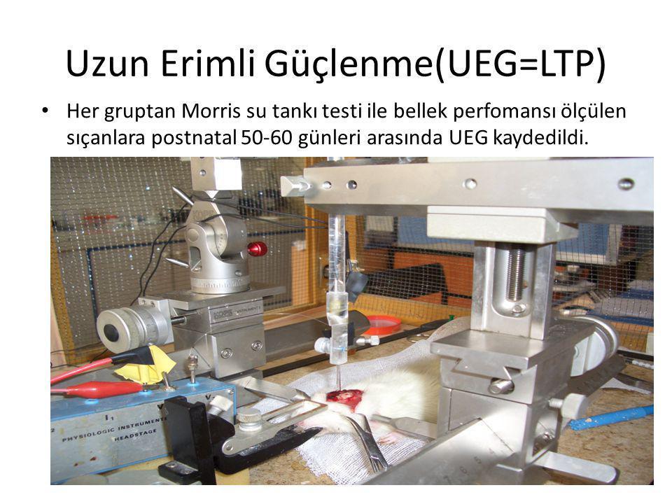 Uzun Erimli Güçlenme(UEG=LTP) • Her gruptan Morris su tankı testi ile bellek perfomansı ölçülen sıçanlara postnatal 50-60 günleri arasında UEG kaydedi