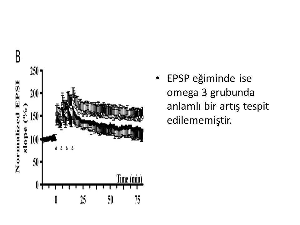 • EPSP eğiminde ise omega 3 grubunda anlamlı bir artış tespit edilememiştir.
