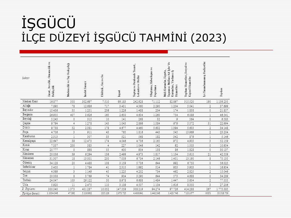 İŞGÜCÜ İLÇE DÜZEYİ TOPLAMLARI İL DÜZEYİ (2023)
