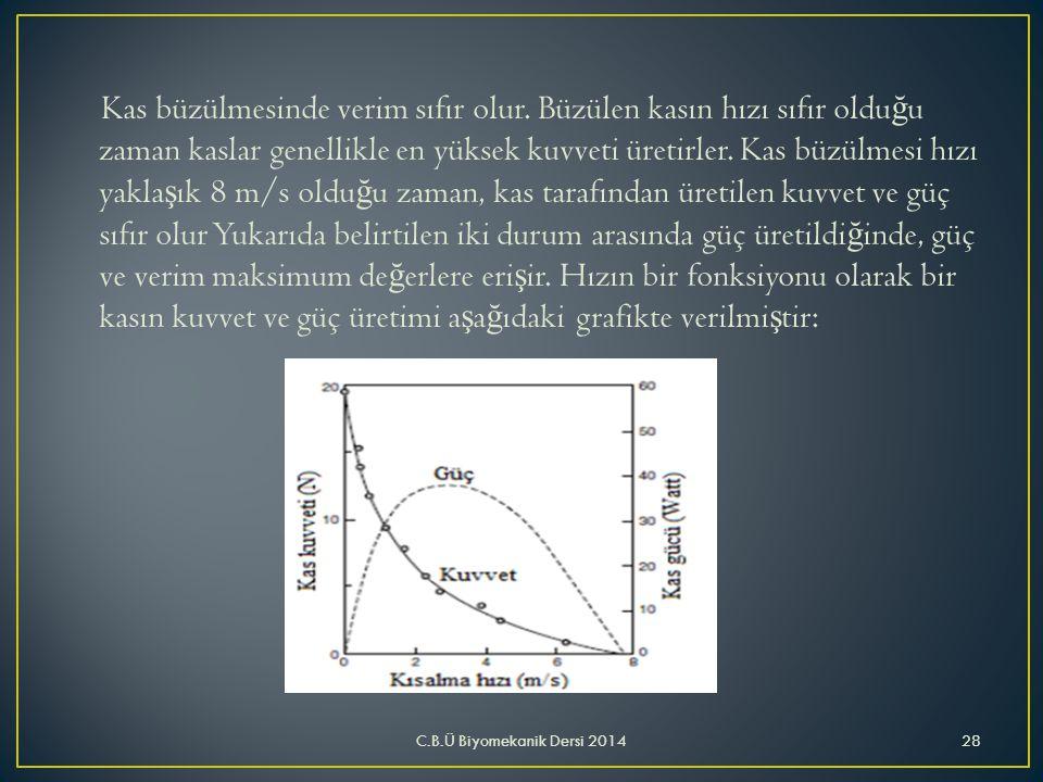 Kas büzülmesinde verim sıfır olur. Büzülen kasın hızı sıfır oldu ğ u zaman kaslar genellikle en yüksek kuvveti üretirler. Kas büzülmesi hızı yakla ş ı
