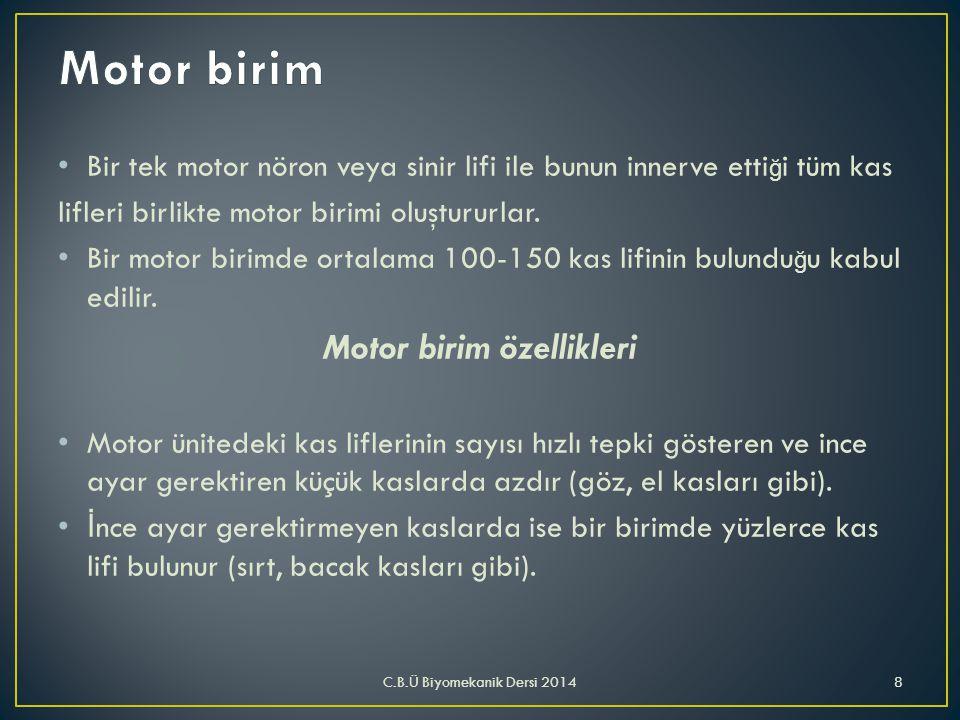 • Bir tek motor nöron veya sinir lifi ile bunun innerve etti ğ i tüm kas lifleri birlikte motor birimi oluştururlar. • Bir motor birimde ortalama 100-