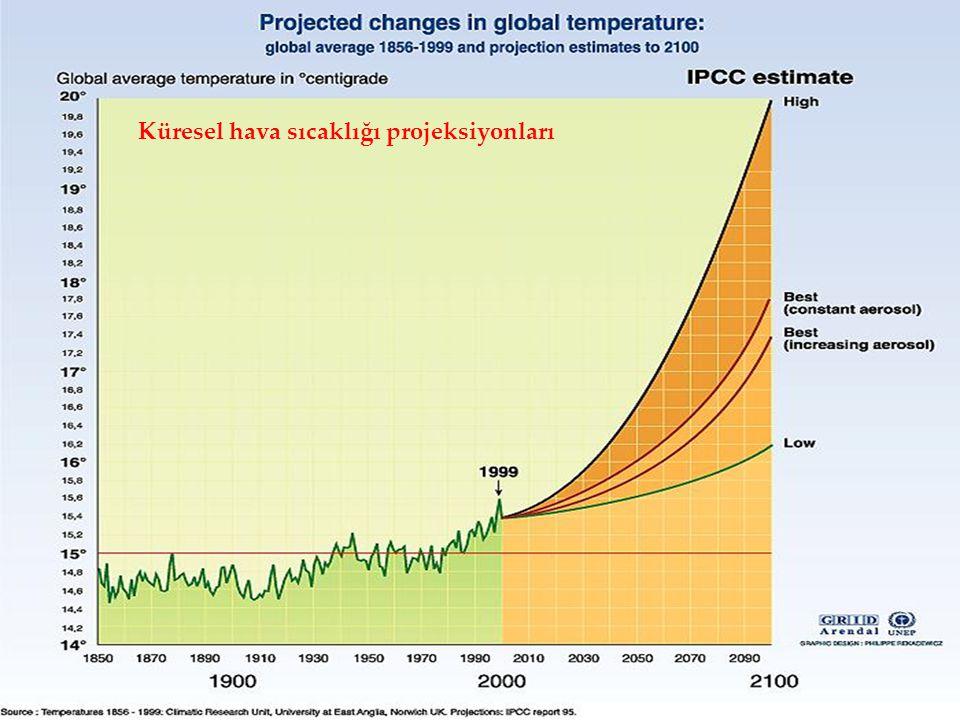 Küresel hava sıcaklığı projeksiyonları