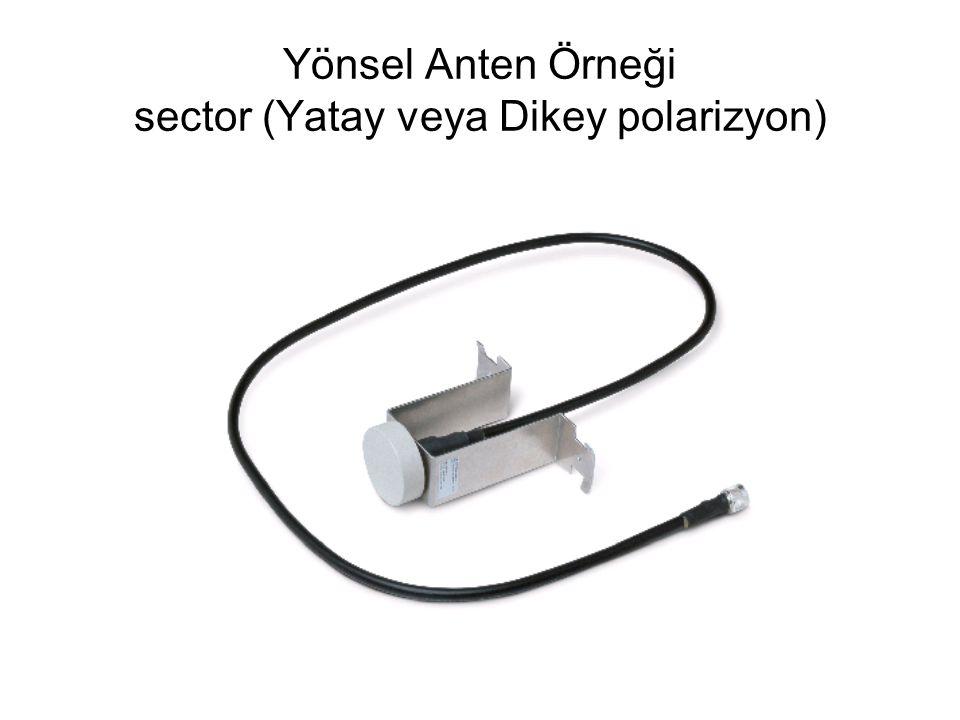 Yönsel Anten Örneği sector (Yatay veya Dikey polarizyon)