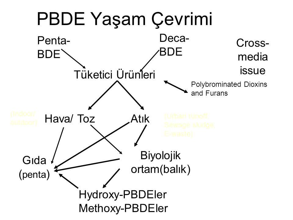 PBDE Yaşam Çevrimi Penta- BDE Deca- BDE Tüketici Ürünleri Polybrominated Dioxins and Furans Hava/ TozAtık Gıda ( penta ) (Urban runoff; Sewage sludge;