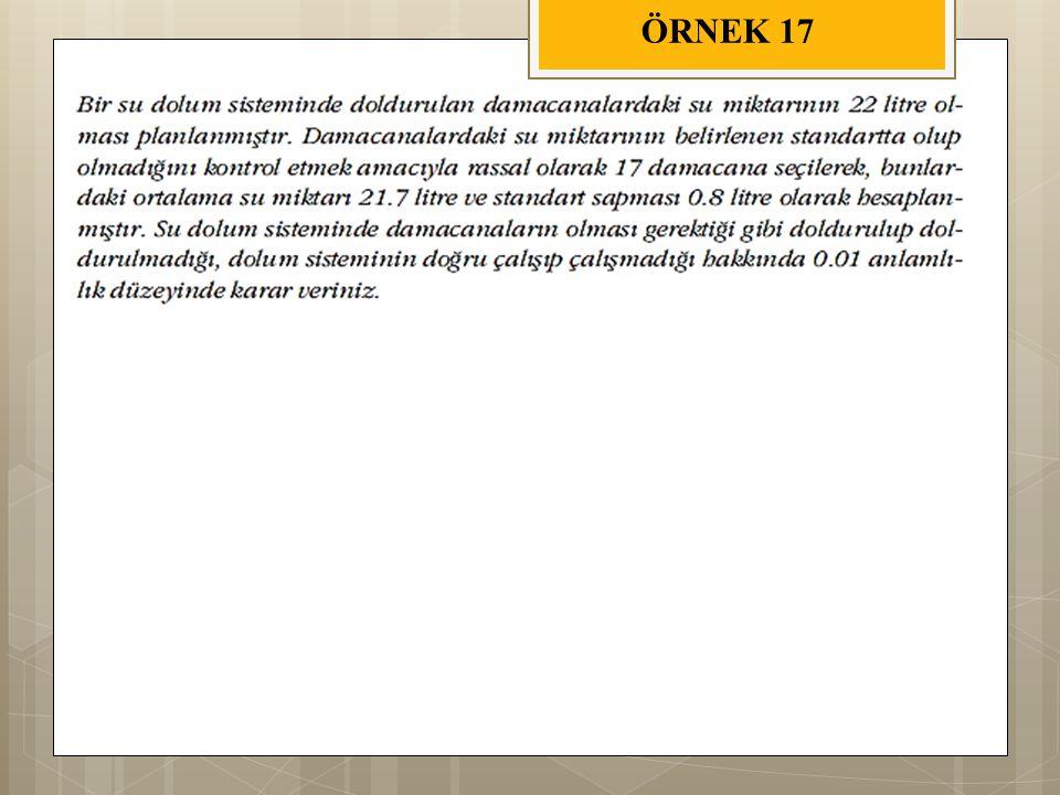 ÖRNEK 17
