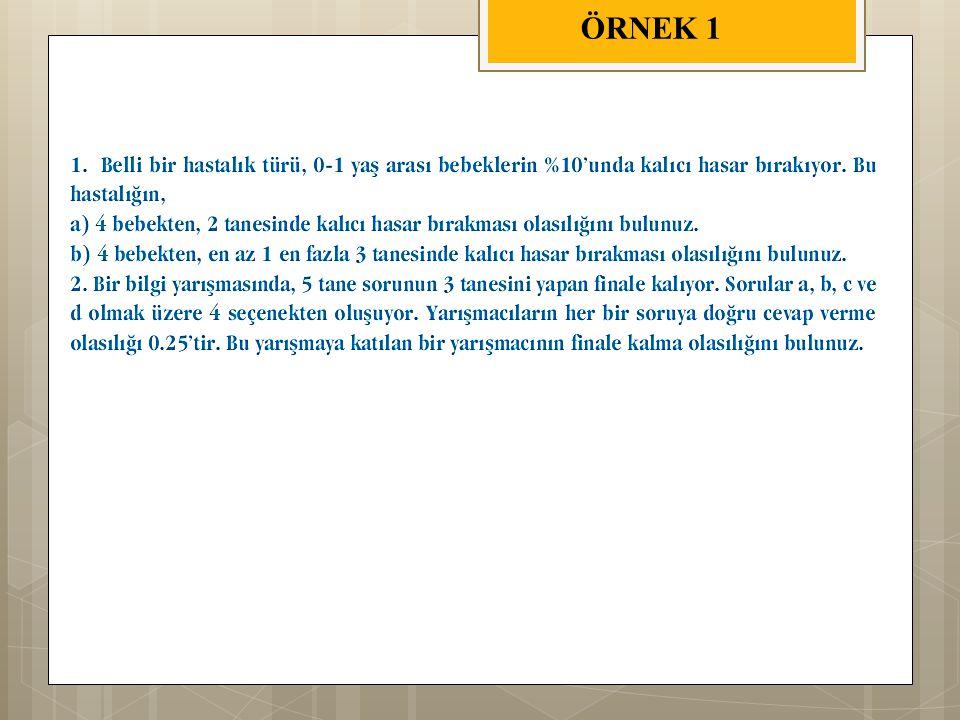ÖRNEK 1