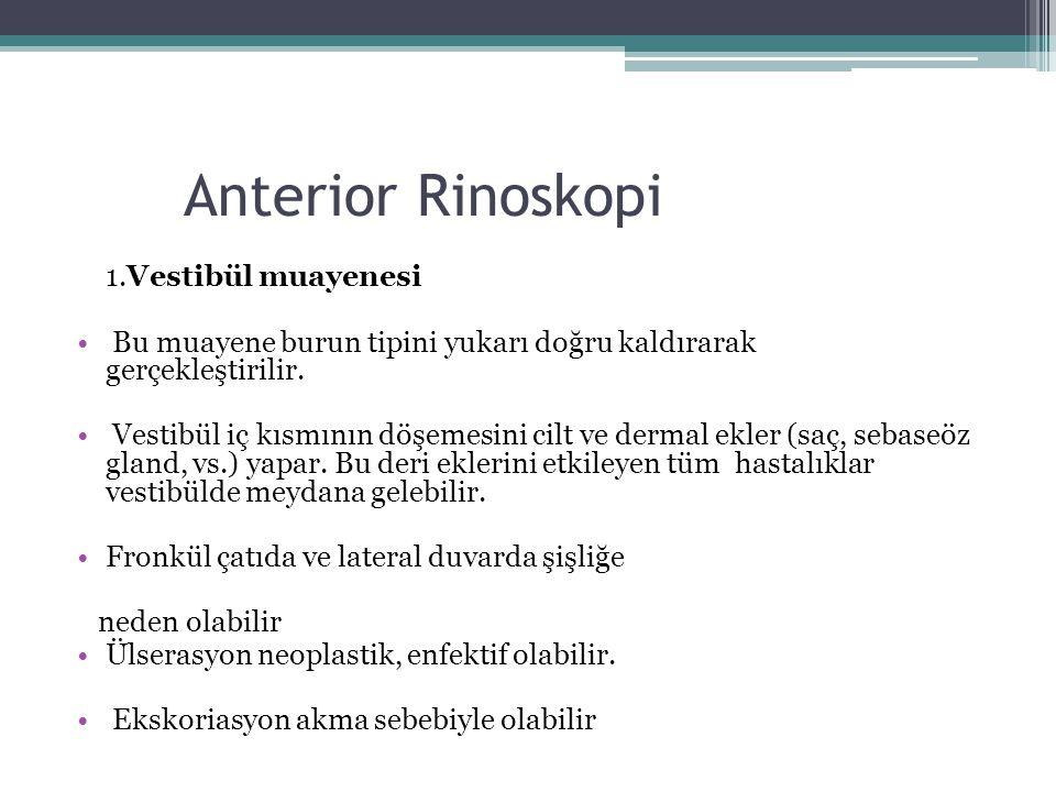 Anterior Rinoskopi 1.Vestibül muayenesi • Bu muayene burun tipini yukarı doğru kaldırarak gerçekleştirilir. • Vestibül iç kısmının döşemesini cilt ve