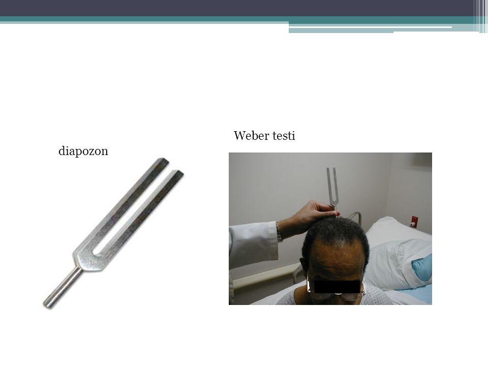 diapozon Weber testi