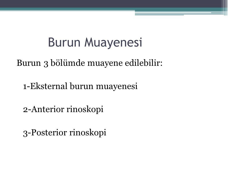 Burun Muayenesi Burun 3 bölümde muayene edilebilir: 1-Eksternal burun muayenesi 2-Anterior rinoskopi 3-Posterior rinoskopi