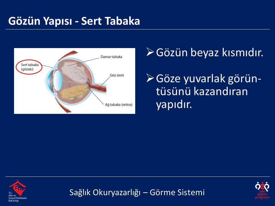 Gözün Yapısı - Sert Tabaka Sağlık Okuryazarlığı – Görme Sistemi  Gözün beyaz kısmıdır.  Göze yuvarlak görün- tüsünü kazandıran yapıdır.