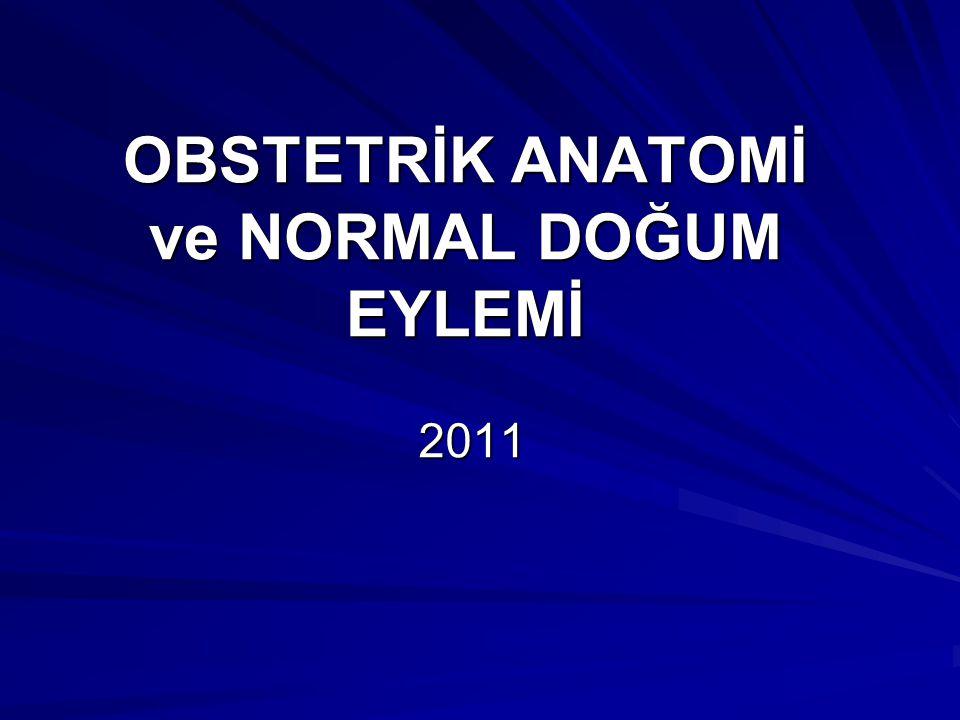 OBSTETRİK ANATOMİ ve NORMAL DOĞUM EYLEMİ 2011