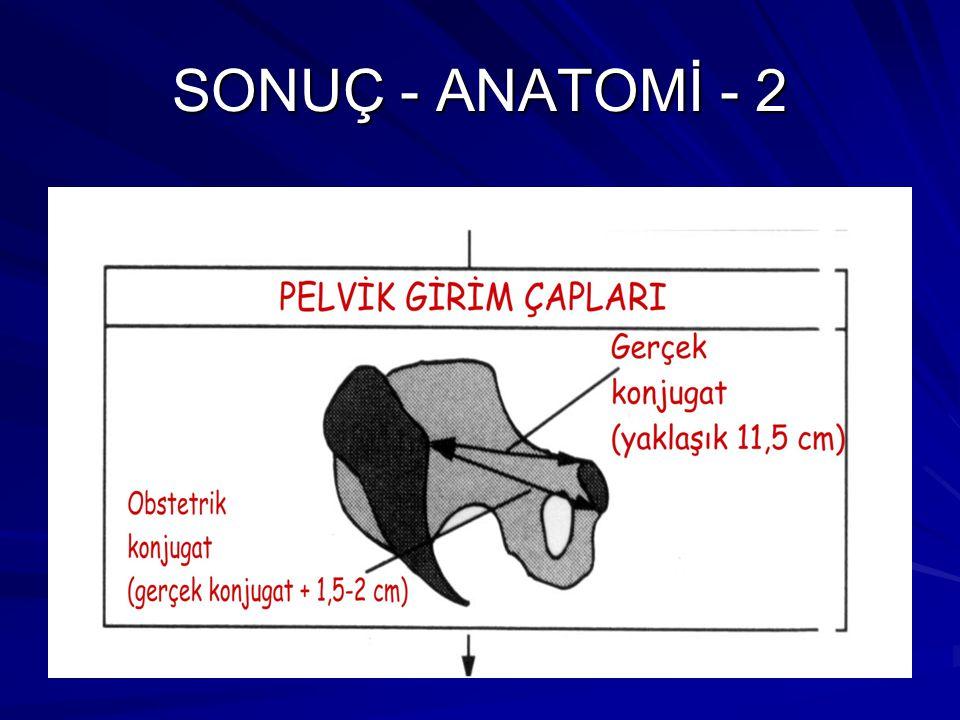 SONUÇ - ANATOMİ - 2