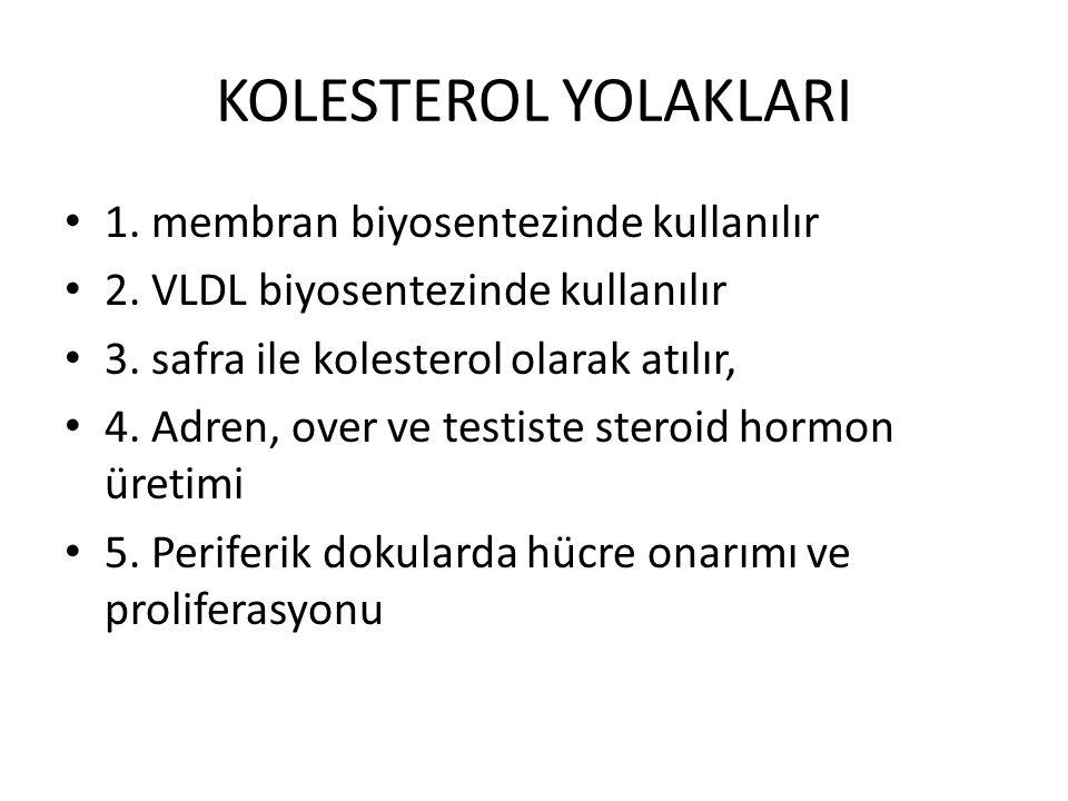 KOLESTEROL YOLAKLARI • 1. membran biyosentezinde kullanılır • 2. VLDL biyosentezinde kullanılır • 3. safra ile kolesterol olarak atılır, • 4. Adren, o