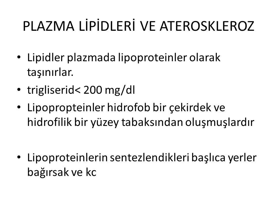 PLAZMA LİPİDLERİ VE ATEROSKLEROZ • Lipidler plazmada lipoproteinler olarak taşınırlar. • trigliserid< 200 mg/dl • Lipopropteinler hidrofob bir çekirde