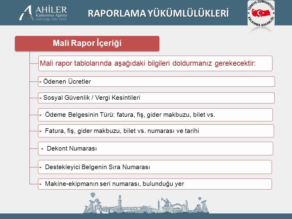 Mali Rapor İçeriği Mali rapor tablolarında aşağıdaki bilgileri doldurmanız gerekecektir: - Ödenen Ücretler - Sosyal Güvenlik / Vergi Kesintileri - Öde