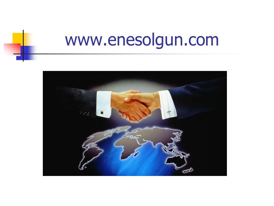 www.enesolgun.com