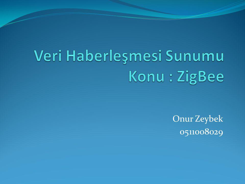 Onur Zeybek 0511008029
