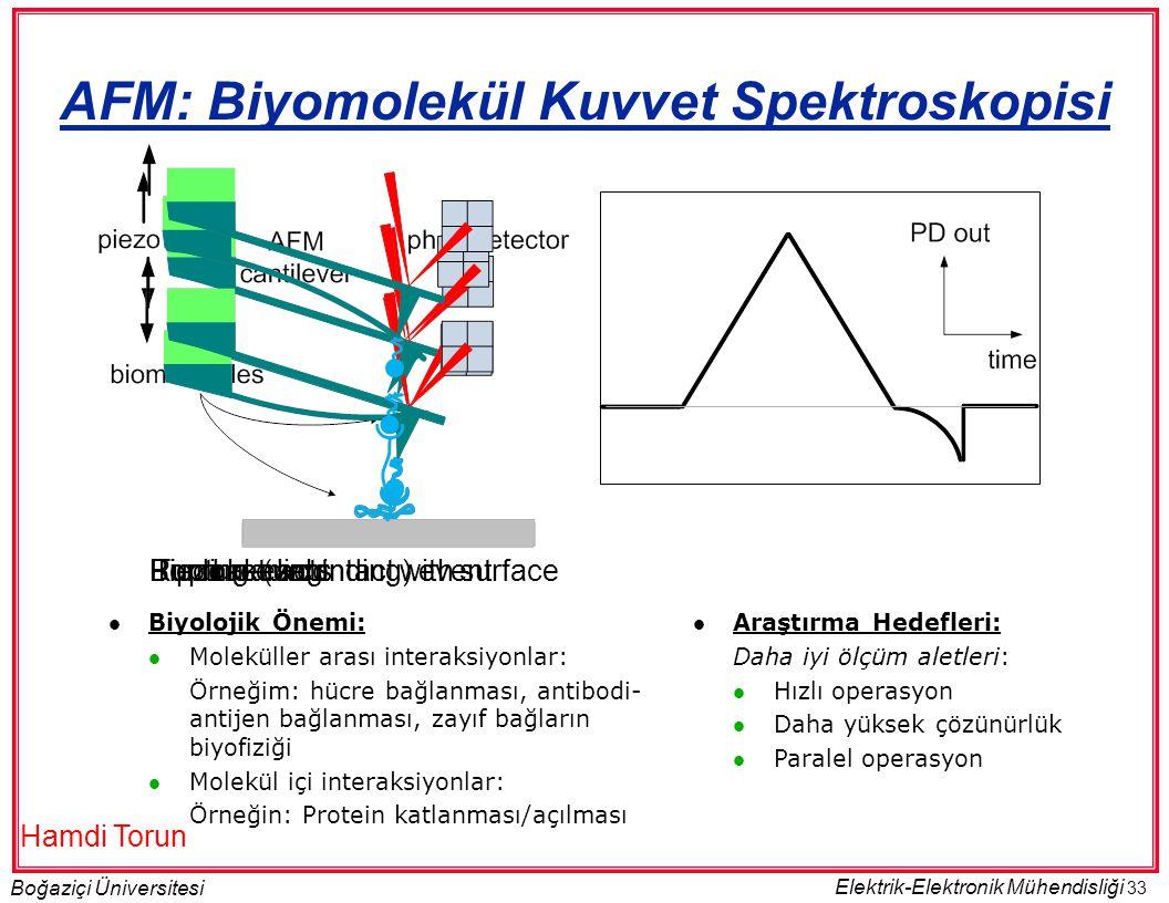33 Boğaziçi Üniversitesi Elektrik-Elektronik Mühendisliği Tip makes contact with surfaceBinding event Piezo retracts Bond loading Rupture (unbinding) event AFM: Biyomolekül Kuvvet Spektroskopisi  Araştırma Hedefleri: Daha iyi ölçüm aletleri:  Hızlı operasyon  Daha yüksek çözünürlük  Paralel operasyon  Biyolojik Önemi:  Moleküller arası interaksiyonlar: Örneğim: hücre bağlanması, antibodi- antijen bağlanması, zayıf bağların biyofiziği  Molekül içi interaksiyonlar: Örneğin: Protein katlanması/açılması Hamdi Torun