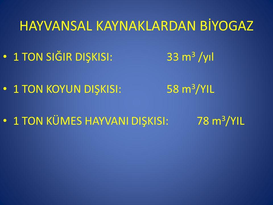 HAYVANSAL KAYNAKLARDAN BİYOGAZ • 1 TON SIĞIR DIŞKISI: 33 m 3 /yıl • 1 TON KOYUN DIŞKISI: 58 m 3 /YIL • 1 TON KÜMES HAYVANI DIŞKISI: 78 m 3 /YIL