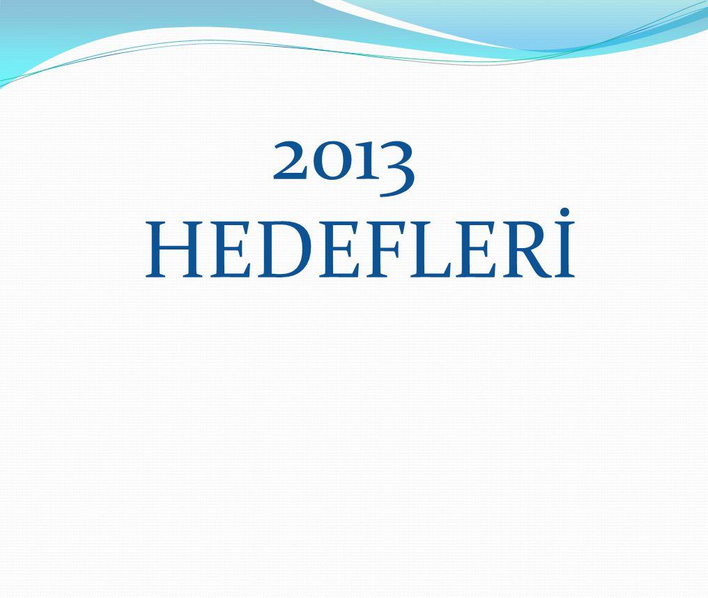 2013 HEDEFLERİ
