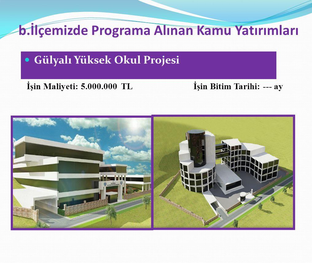 b.İlçemizde Programa Alınan Kamu Yatırımları  Gülyalı Yüksek Okul Projesi İşin Maliyeti: 5.000.000 TL İşin Bitim Tarihi: --- ay