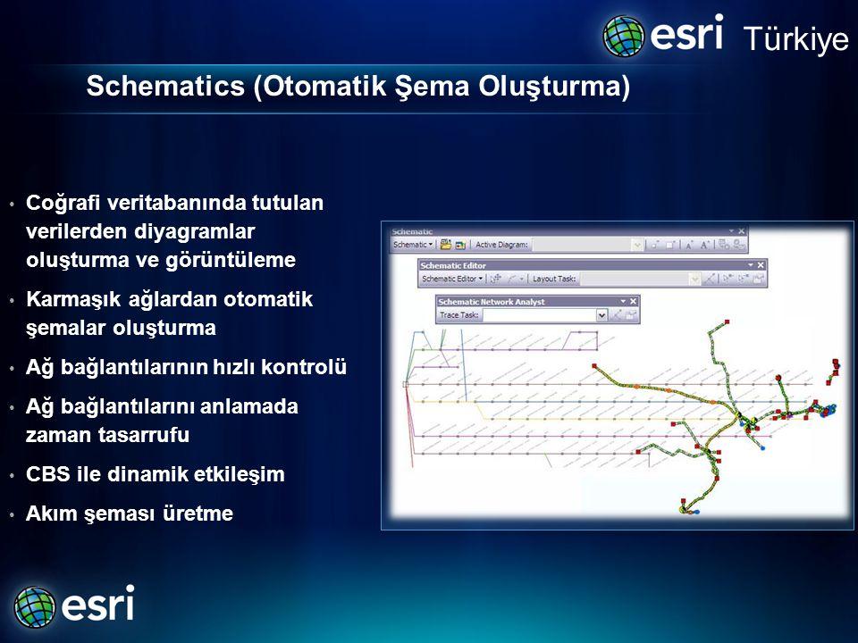 Schematics (Otomatik Şema Oluşturma) • Coğrafi veritabanında tutulan verilerden diyagramlar oluşturma ve görüntüleme • Karmaşık ağlardan otomatik şema
