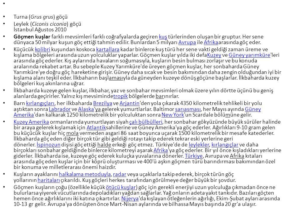 • Turna (Grus grus) göçü • Leylek (Ciconis ciconia) göçü İstanbul Ağustos 2010 • Göçmen kuşlar farklı mevsimleri farklı coğrafyalarda geçiren kuş türlerinden oluşan bir gruptur.