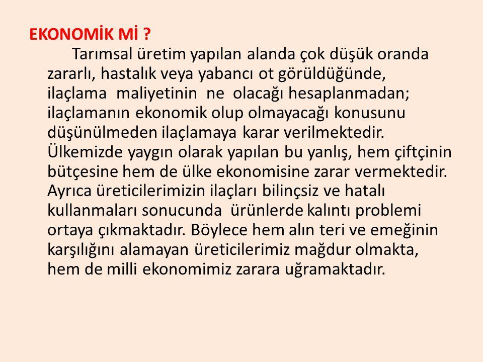 EKONOMİK Mİ .