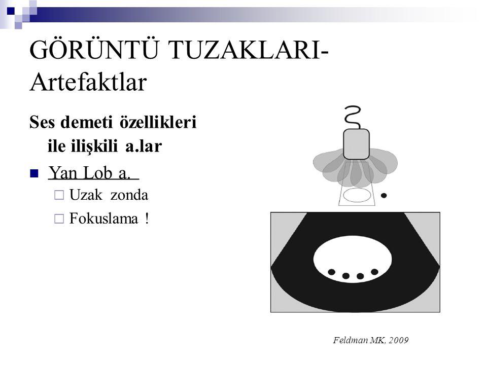 GÖRÜNTÜ TUZAKLARI- Artefaktlar Ses demeti özellikleri ile ilişkili a.lar  Yan Lob a.  Uzakzonda  Fokuslama ! Feldman MK, 2009