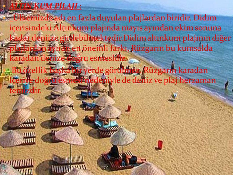  ALTIN KUM PİLAJI :  Ülkemizde adı en fazla duyulan plajlardan biridir.