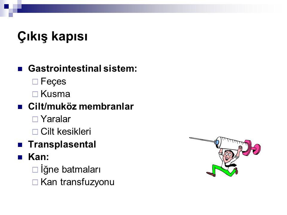  Gastrointestinal sistem:  Feçes  Kusma  Cilt/muköz membranlar  Yaralar  Cilt kesikleri  Transplasental  Kan:  İğne batmaları  Kan transfuzy