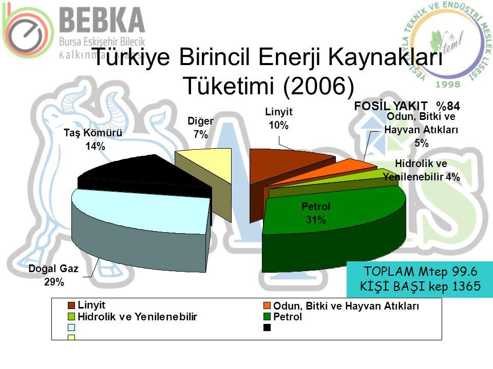 Türkiye Birincil Enerji Kaynakları Tüketimi (2006) Odun, Bitki ve Hayvan Atıkları 5% Hidrolik ve Yenilenebilir 4% Petrol 31% Doğal Gaz 29% Diğer 7% Ta