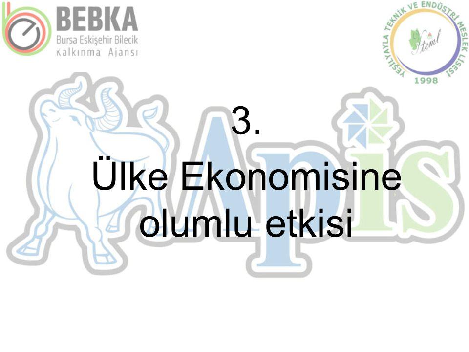 3. Ülke Ekonomisine olumlu etkisi