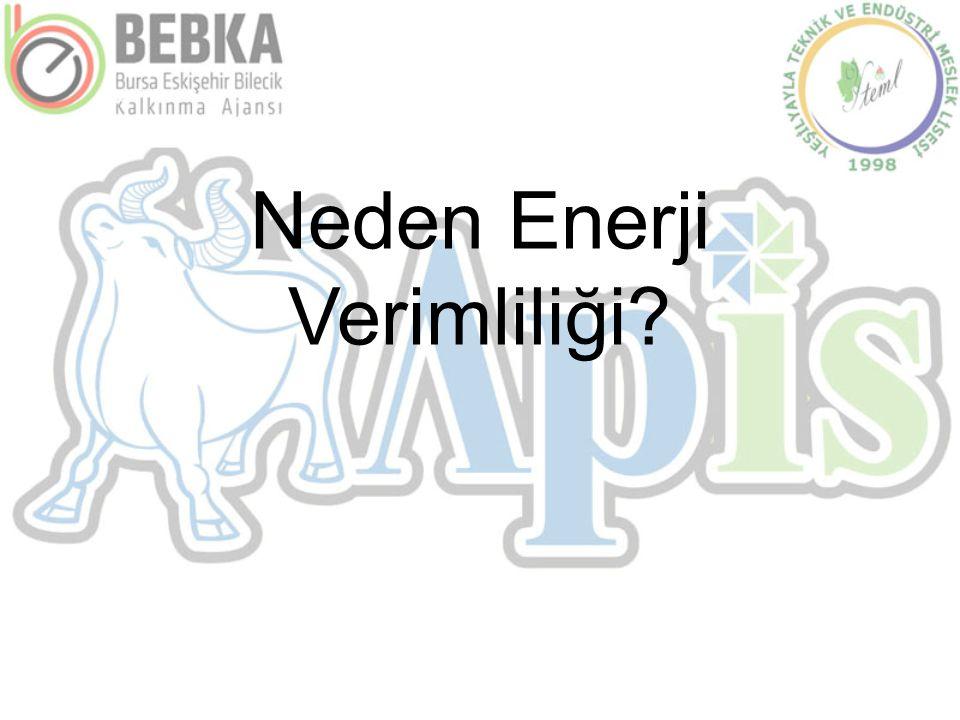Neden Enerji Verimliliği?
