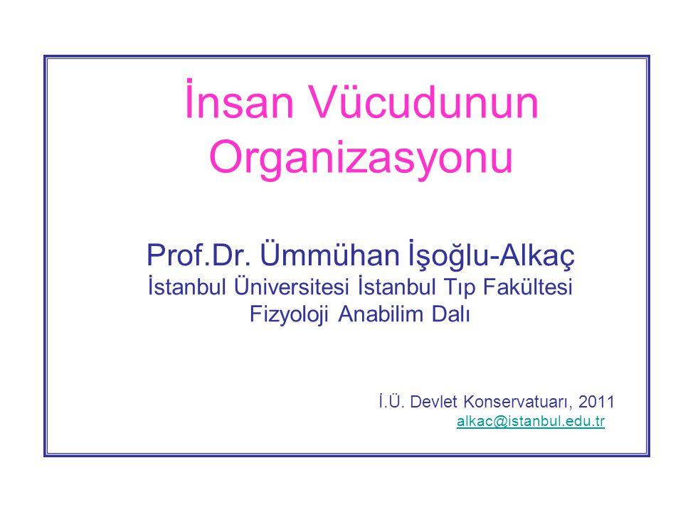 İnsan Vücudunun Organizasyonu Prof.Dr.