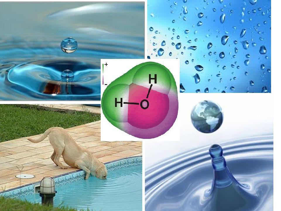 VÜCUT ORGANİK VE İNORGANİK BİLEŞENLERDEN OLUŞUR •Kimyasal bileşimler iki geniş grupta toplanabilir •Organik ve inorganik