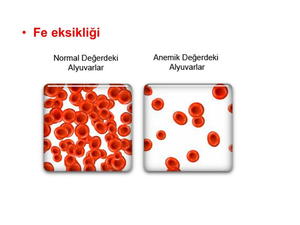 Hücresel organizasyon •Kimyasal düzeyden sonraki organizasyon düzeyi hücresel düzeydir.