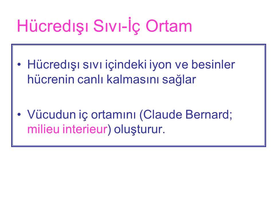 Hücredışı Sıvı-İç Ortam •Hücredışı sıvı içindeki iyon ve besinler hücrenin canlı kalmasını sağlar •Vücudun iç ortamını (Claude Bernard; milieu interieur) oluşturur.
