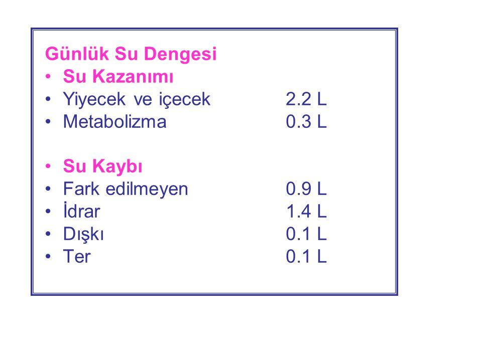 Günlük Su Dengesi •Su Kazanımı •Yiyecek ve içecek2.2 L •Metabolizma0.3 L •Su Kaybı •Fark edilmeyen0.9 L •İdrar1.4 L •Dışkı0.1 L •Ter0.1 L