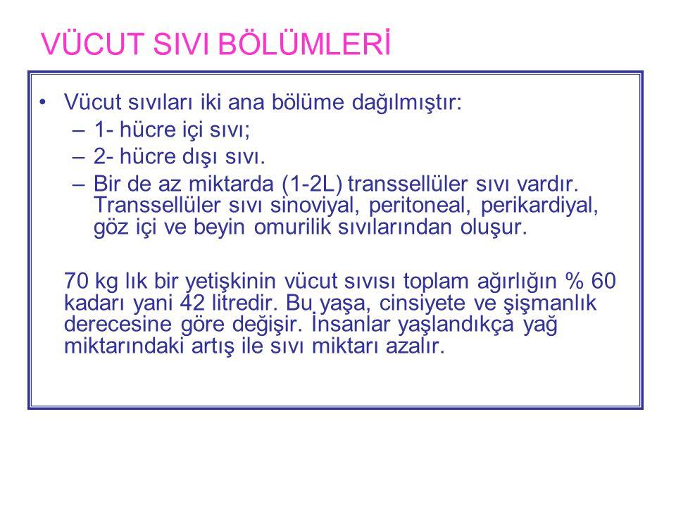 VÜCUT SIVI BÖLÜMLERİ.