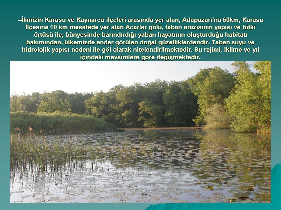 --Saha 1.derece doğal sit alanı ve Yaban hayatı geliştirme sahası olarak koruma altındadır.
