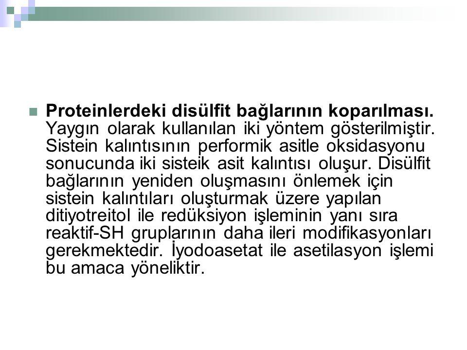  Proteinlerdeki disülfit bağlarının koparılması.