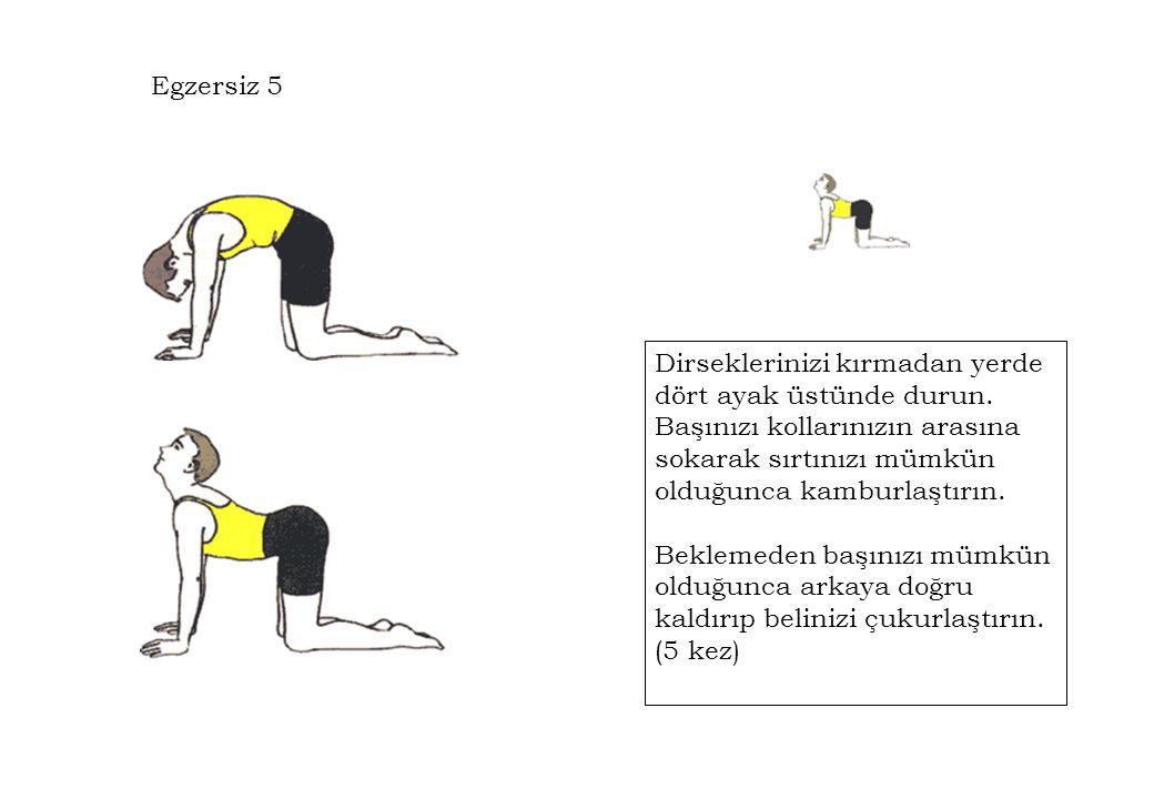 Egzersiz 5 Dirseklerinizi kırmadan yerde dört ayak üstünde durun. Başınızı kollarınızın arasına sokarak sırtınızı mümkün olduğunca kamburlaştırın. Bek