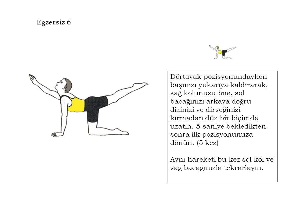 Egzersiz 6 Dörtayak pozisyonundayken başınızı yukarıya kaldırarak, sağ kolunuzu öne, sol bacağınızı arkaya doğru dizinizi ve dirseğinizi kırmadan düz bir biçimde uzatın.