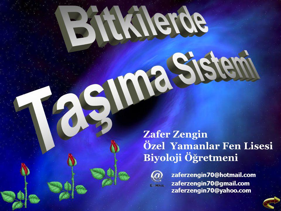 Zafer Zengin Özel Yamanlar Fen Lisesi Biyoloji Öğretmeni zaferzengin70@hotmail.com zaferzengin70@gmail.com zaferzengin70@yahoo.com